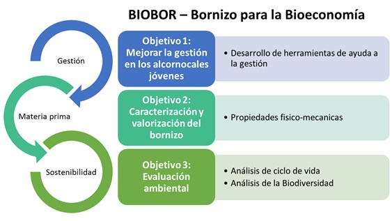 Biobor - Bornizo para la bioeconomía