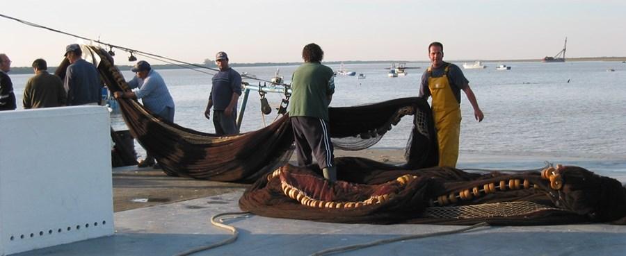 La pesca la tienda bielorruso