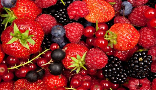 Transformaci n de frutos rojos de huesca como forma de for Arbol de frutos rojos pequenos